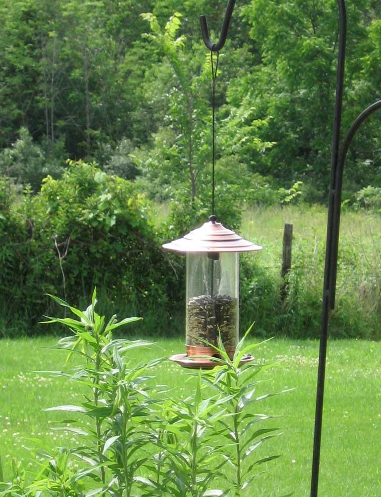 Birdfeeder-