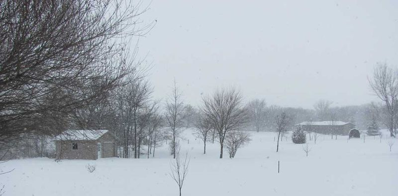 Snow-1-