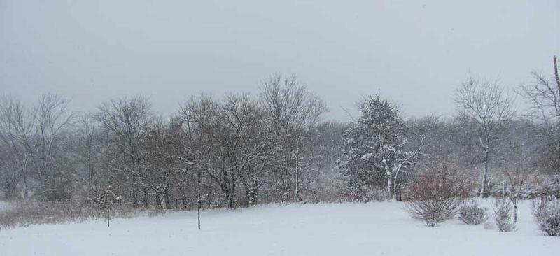 Snow-2-
